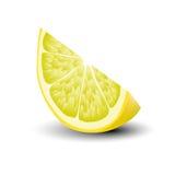 Lokalisierte realistische farbige Scheibe der saftigen gelben Farbzitrone mit Schatten auf weißem Hintergrund lizenzfreie abbildung