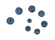 Lokalisierte saftige Blaubeeren Stockfotos
