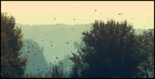 Lokalisierte Vektorikonen auf schwarzem Hintergrund Lizenzfreie Stockfotografie