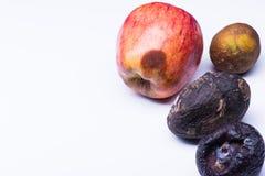 Lokalisierte verdorbene Früchte lizenzfreie stockbilder