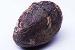 Lokalisierte verdorbene Mango stockfoto