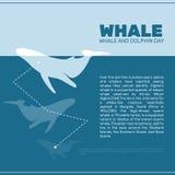 Lokalisierte Walvektorillustration Ozeansäugetier auf dem blauen Hintergrund Stockfoto