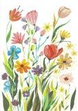 Lokalisierten rote magentarote weiße rosa Blumenstrauß-Blumen und Federn Aquarell Boho Burgunder stock abbildung