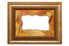 Lokalisierter alter Rahmen mit Blättern stockbilder