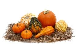 Lokalisierter Autumn Decoration von Kürbis und von Kürbissen Pumkins Lizenzfreies Stockbild