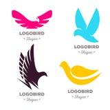 Lokalisierter bunter Fliegenvogel-Vektorlogosatz Tierfirmenzeichensammlung Stockbilder