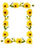 Lokalisierter Rahmen von Blumen Lizenzfreies Stockbild