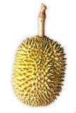 Lokalisierter weißer Hintergrund des Durian Frucht Lizenzfreie Stockbilder