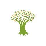 Lokalisiertes abstraktes grünes, orange Farbbaumlogo Natürliches Elementfirmenzeichen Blätter und Stammikone Park- oder Waldzeich Lizenzfreie Stockbilder