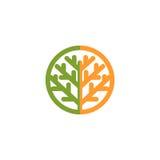 Lokalisiertes abstraktes grünes, orange Farbbaumlogo Natürliches Elementfirmenzeichen Blätter und Stammikone Park- oder Waldzeich Lizenzfreie Stockfotografie