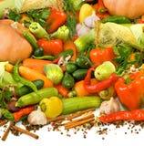 lokalisiertes Bild vielen reifen Gemüses, Kräuter und Gewürznahaufnahme stockfotos