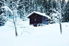Lokalisiertes Häuschen des alten Holzes, Bäume, Schnee, Winter in Dolomiti-Bergen, in Cadore, Italien Stockbild