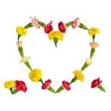 Lokalisiertes Herz von Wiesenblumen Lizenzfreies Stockbild