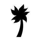 lokalisiertes Ikonendesign des Baums Palme Stockfoto