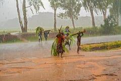Lokalni ludzie krzyżuje drogę w Malawi Obraz Stock