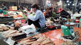 Lokalni ludzie sprzedają ryba w Siem Przeprowadzają żniwa rynek zdjęcia royalty free