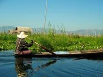 Lokalny mężczyzna paddling w Inle jeziorze, Myanmar Fotografia Royalty Free