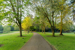 Lokalny park z drogą przemian fotografia royalty free