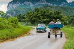 Lokalny ruch drogowy w wiejskiej drodze w Vinales, Kuba Fotografia Stock