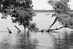 Lokalny rybak po środku jeziora fotografia royalty free