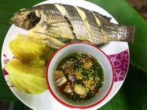 Lokalny tajlandzki tradyci jedzenie Obrazy Royalty Free
