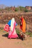 Lokalt folk som går runt om det Ranthambore fortet bland grå langur Royaltyfria Foton