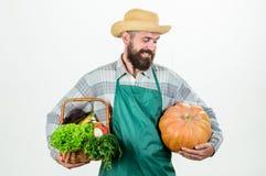 Lokalt fullvuxna foods Lokal lantg?rd Yrkesm?ssig ockupation f?r bondelivsstil Lantbruk och jordbruk Bondekläderförkläde royaltyfria foton