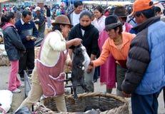lokalt marknadsfolk för ecuadorian Royaltyfria Foton