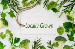 Lokalt växande begrepp för grönsaker arkivbilder