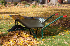Lokalvårdutrustning i en trädgård Royaltyfria Bilder