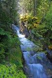 Loki Creek Falls Stock Afbeeldingen