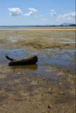 Lokobe Vorbehaltküstenlinie und -sand Lizenzfreies Stockbild