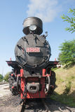 Lokomotiv av järnvägen för smalt mått Royaltyfria Bilder