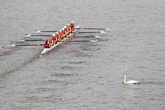 Lokomotiva Beroun - 100a raza del rowing de Primatorky Imagen de archivo