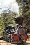 lokomotyw pionowe Obraz Stock