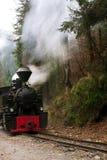 lokomotywa leśna Fotografia Royalty Free