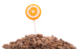 Lollipop grow from Stones Stock Photo