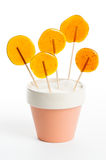 Lollipops Immagine Stock