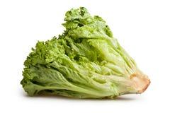 Lollo bionda lettuce Stock Photo