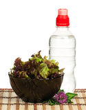 Lollo Rosso lettuce Stock Photography