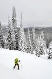 Lolo Pass som snowshoeing Arkivbild