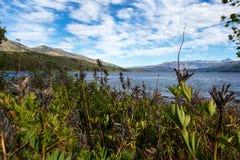 Lolog lake. Argentina Royalty Free Stock Photography