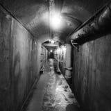 Loma van Casa Tunnel in Toronto, Canada Royalty-vrije Stock Afbeelding