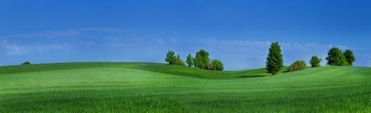 Lomas con la hierba verde y el cielo azul Fotos de archivo