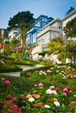 Lombard street from below Royalty Free Stock Images