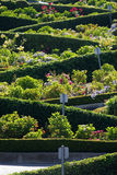 Lombard Street, the crookedest street in the world, San Francisco, California Royalty Free Stock Photos