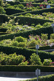 Lombard Street, the crookedest street in the world, San Francisco, California Royalty Free Stock Photo