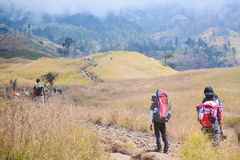 Lombok Porters along the road to the top Stock Photos