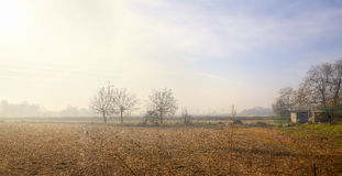 Lomellina Countryside, wintertime. Color image Stock Images