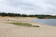 Lommeles Сахара охраняемая территория в северной Бельгии с уникально малой песочной пустыней стоковые фотографии rf